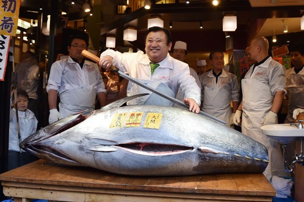 İşte ton balığı kralı
